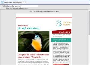 Newsletter-dans-mail