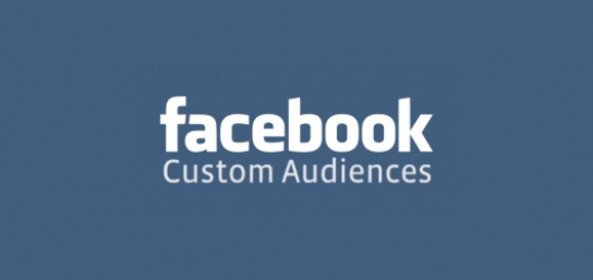 Facebook-audience-tool